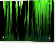 Woodland Abstract Iv Acrylic Print