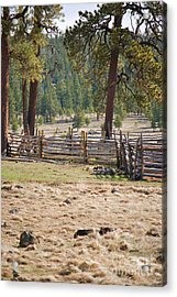 Woodland Corral - White Mountains Arizona Acrylic Print by Donna Greene