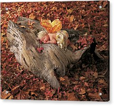 Woodland Fairy Acrylic Print