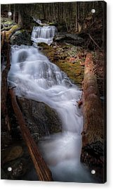Acrylic Print featuring the photograph Woodland Falls 2017 by Bill Wakeley
