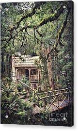 Woodland Mysteries Acrylic Print by Evelina Kremsdorf