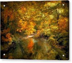 Woodland River Lights Acrylic Print by Jessica Jenney
