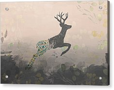 Woodland Stag Acrylic Print by Amanda Lakey