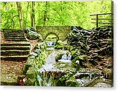 Woodland Steps And Stream Acrylic Print