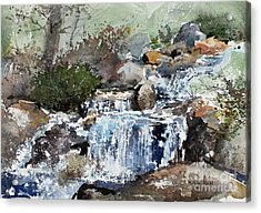 Woodland Stream Acrylic Print by Monte Toon