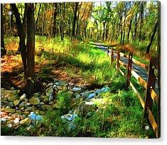 Woodland Symphony Acrylic Print