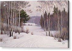 Woodland Trail Acrylic Print by Boris Walentinowitsch Scherkow
