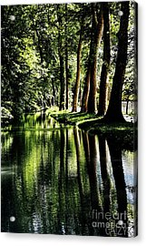 Woodoh Acrylic Print by Cazyk Photography