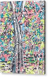 Woods #3 Acrylic Print