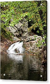 Acrylic Print featuring the photograph Woodsy Flow by Kristin Elmquist