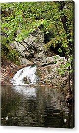 Woodsy Flow Acrylic Print by Kristin Elmquist