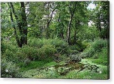 Woodsy Acrylic Print