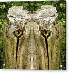 Woody 156 Acrylic Print
