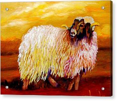 Acrylic Print featuring the painting Woolly by Marie Hamby