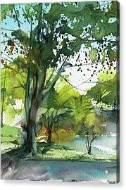 Worcester Sketchbook, Elm Park During May Vertical Acrylic Print by Sumiyo Toribe
