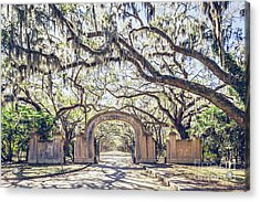 Wormsloe Entry Gate Acrylic Print by Joan McCool