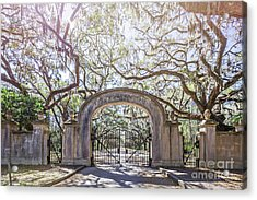 Wormsloe Gate Acrylic Print by Joan McCool