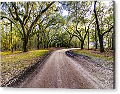 Acrylic Print featuring the photograph Wormsloe Road by Anthony Baatz