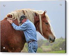 Wrangler Jeans And Belgian Horse Acrylic Print