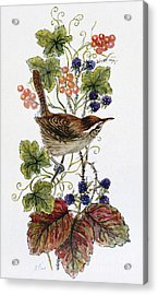 Wren On A Spray Of Berries Acrylic Print by Nell Hill
