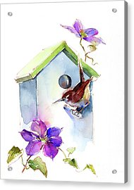 Wren With Birdhouse And Clematis Acrylic Print