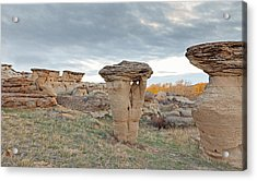 Acrylic Print featuring the photograph Writing On Stone Park by Fran Riley