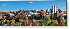 Wsu Autumn Panorama Acrylic Print by David Patterson