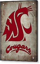 W S U Cougars Acrylic Print by Daniel Hagerman