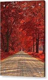 Wye Island Ruby Road Acrylic Print