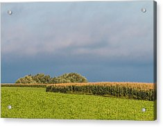 Acrylic Print featuring the photograph Farmer's Field by Patti Deters