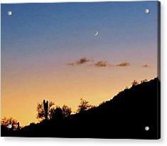 Y Cactus Sunset Moonrise Acrylic Print