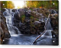 Yacolt Falls In Autumn Acrylic Print by David Gn