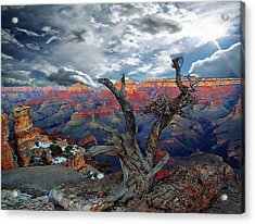 Yaki Point Grand Canyon Acrylic Print by Anthony Dezenzio