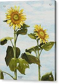 Yana's Sunflowers Acrylic Print by Mary Ann King