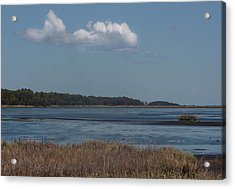 Yawkey Wildlife Reguge - View From The Causeway Acrylic Print by Suzanne Gaff