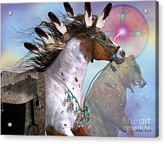 Year Of The Bear Horse Acrylic Print by Corey Ford