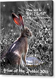 Year Of The Rabbit 2011 . Vertical Bw Acrylic Print by Wingsdomain Art and Photography