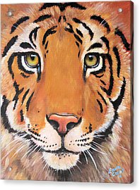 Year Of The Tiger Acrylic Print by Laura Carey