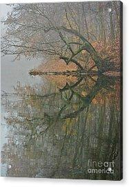 Yearming Acrylic Print