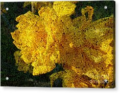 Yellow Abstraction Acrylic Print