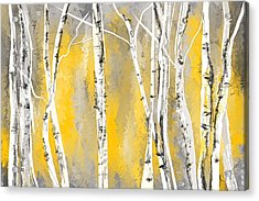 Yellow And Gray Birch Trees Acrylic Print by Lourry Legarde