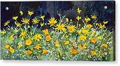 Yellow And Orange Acrylic Print