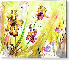 Yellow Bearded Irises And Bees Watercolor Print Acrylic Print