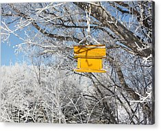 Acrylic Print featuring the photograph Yellow Bird House by Pat Purdy