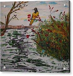 Yellow Bird Acrylic Print by Sima Amid Wewetzer