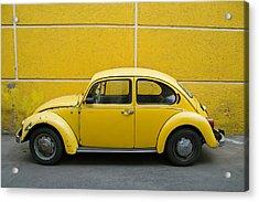 Yellow Bug Acrylic Print by Skip Hunt