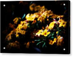 Yellow Acrylic Print by Cabral Stock