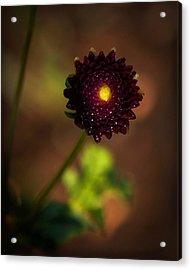 Acrylic Print featuring the photograph Yellow Center by Cherie Duran