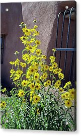 Yellow Composites At Ghost Ranch  Acrylic Print