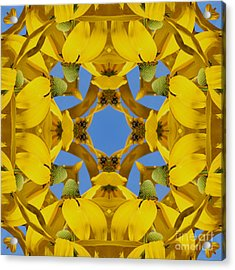 Acrylic Print featuring the photograph Yellow Coneflower Kaleidoscope by Smilin Eyes  Treasures